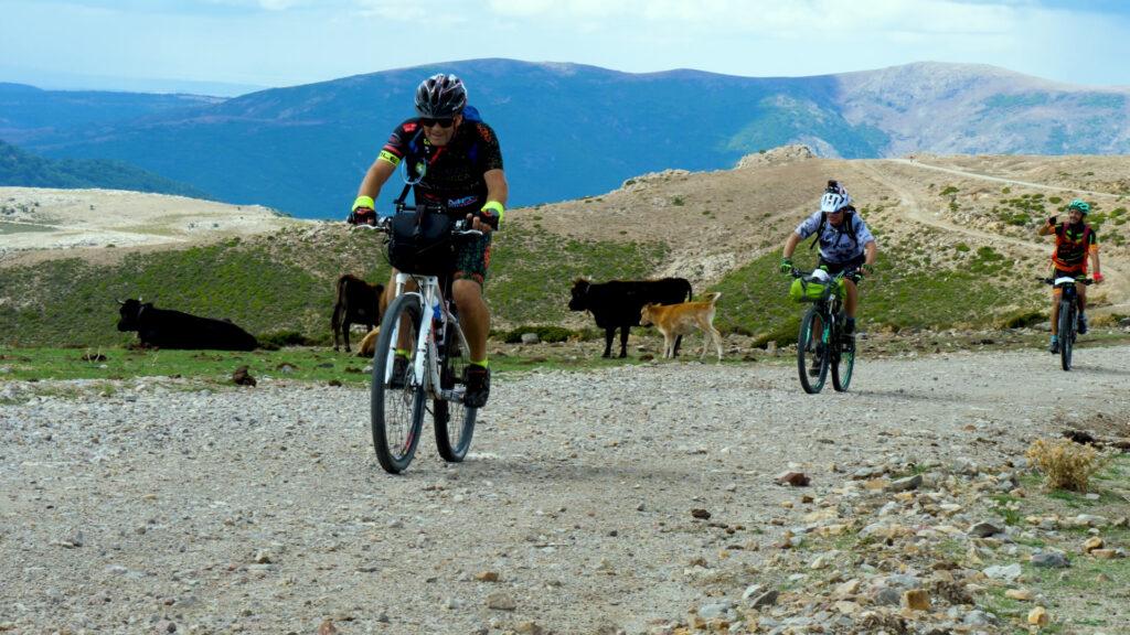 14. cicloturismo belvì trail 1